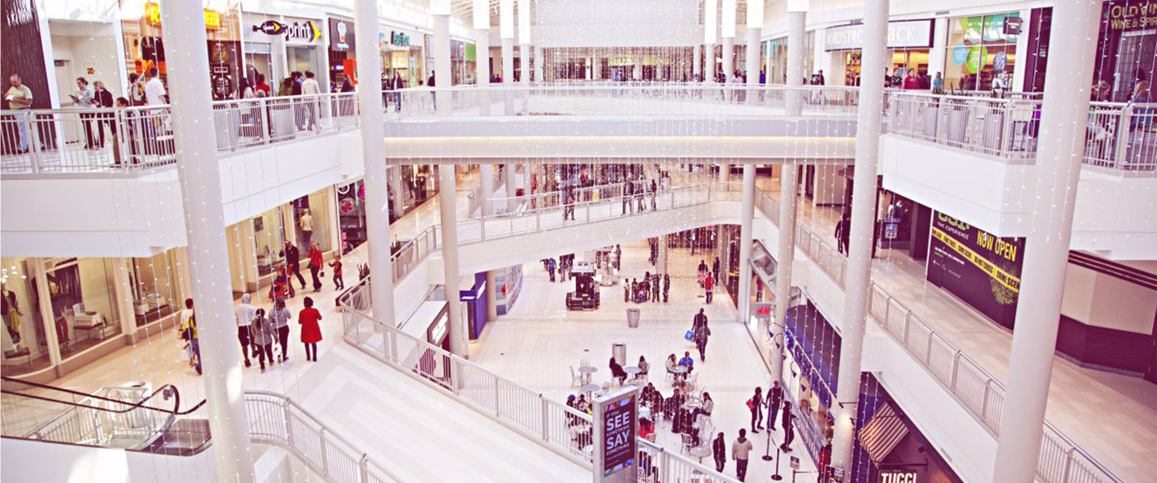 The New Mall Corporate Strategy: Health Hubs